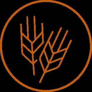 Ícone trigo